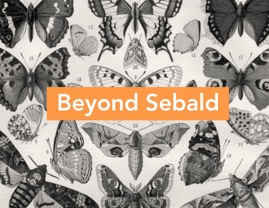 Beyond Sebald